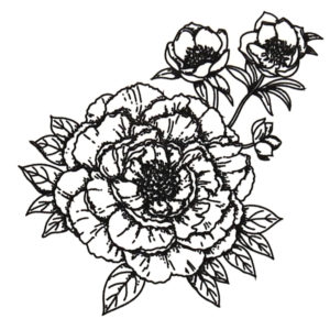 Beyond beauty Black Ink Flash Tattoos Romania Tatuaje temporare