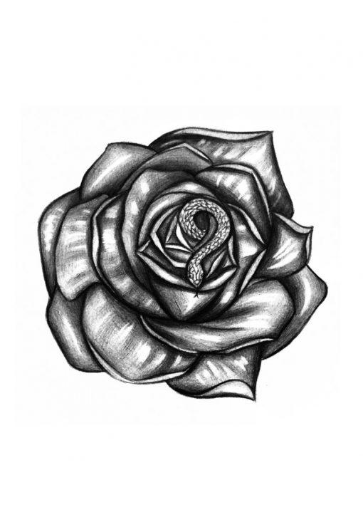 Medusa Money by Alina Ceusan Curated Ink Flash Tattoos Romania 2