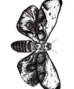 ***Metamorphosis Black Ink Flash Tattoo Romania Tatuaj temporar