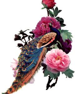 Peacock Fantasy FlashTattoos Romania Blackink