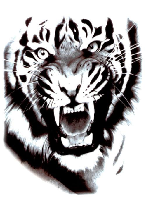 White Tiger Black Ink Flash Tattoos Romania
