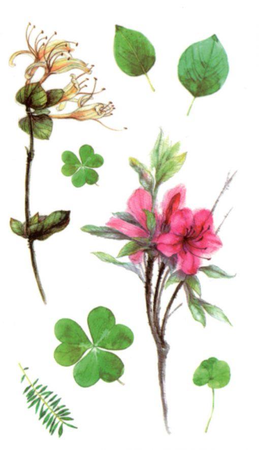Spring Poem 3 Flash Tattoos Romania Tatuaje temporare