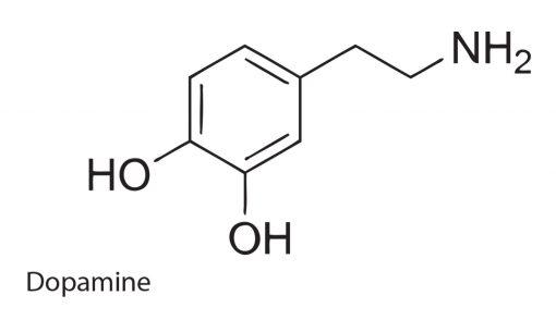 Dopamine Addictions Flash Tattoo Tatuaje Temporare