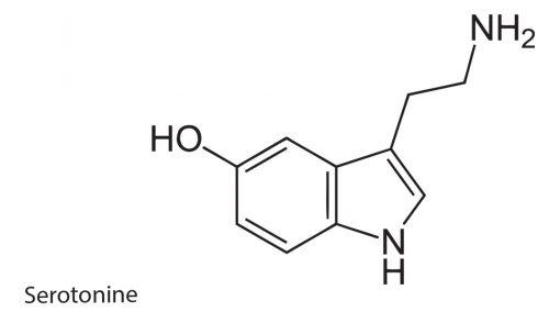 Serotonine Addictions Flash Tattoo Tatuaje Temporare