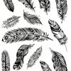 Feather light Flash Tattoos Romania Tatuaj temporar pene